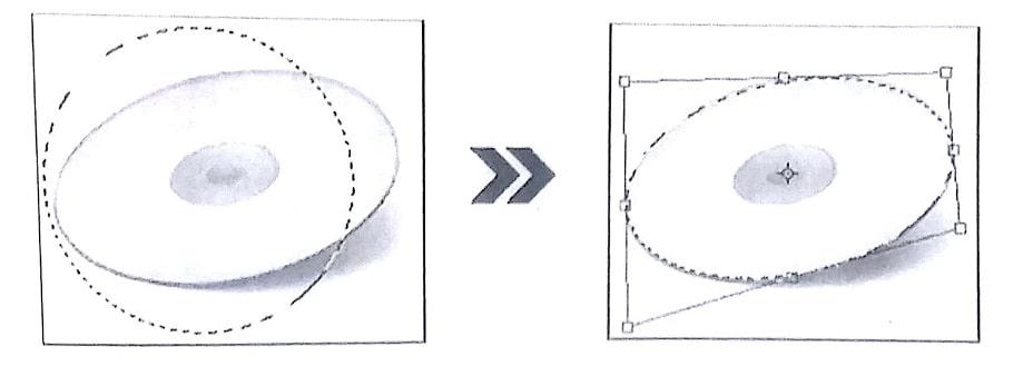 تغییرشکل و تصحیح انتخاب در فتوشاپ