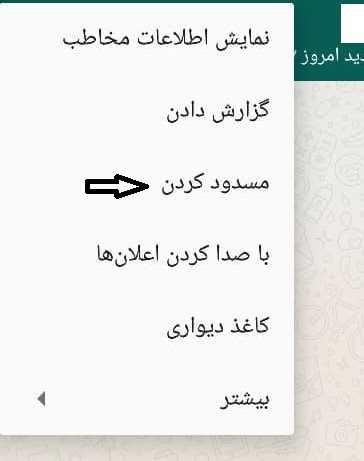 بلاک کردن کاربر در واتساپ